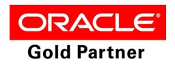 oracle gold partner dot group